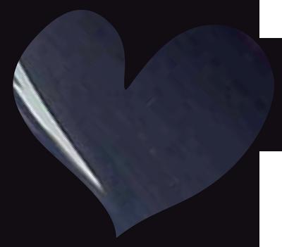 LoveNess Gel Polish Falcon