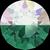 Swarovski Crystal Pixie Petite Jungle Green 5gr._1